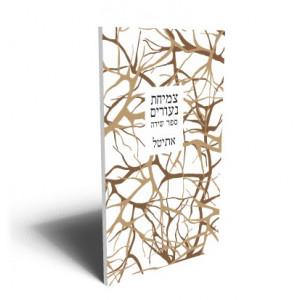 צמיחת נעורים/ אתי טל -  ראה אור בהוצאת הספרים של סטימצקי